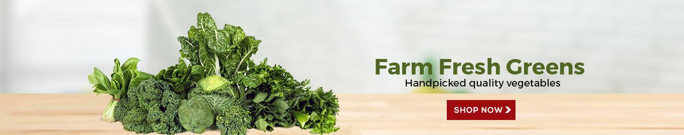 Fresh New Vegetables