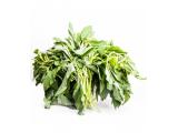 spinach (efo)
