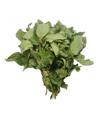 Scent Leaf (Portion)